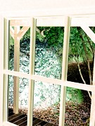 Cabin Window Digital Art Prints - Cabin view Print by John  Duplantis