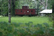 Old Caboose Framed Prints - Caboose-5 Framed Print by Sherry Gombert