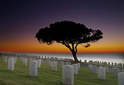 Grave Photo Posters - Cabrillo National Monument Cemetery Poster by Larry Marshall