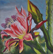 Blooms Pastels - Cactus Bloom by Judy Sprague