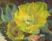 Lawyers Paintings - Cactus Flower Series--Lawyers Tongue  by Claire Bistline
