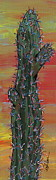 Marcia Weller-wenbert Metal Prints - Cactus of Color 11 Metal Print by Marcia Weller