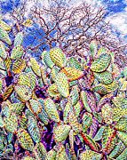 Solano Digital Art Framed Prints - Cactus of the Sonoma Mission Framed Print by Ken Evans