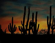 Aaron Thomas - Cactus Sunset