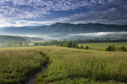 Field. Cloud Framed Prints - Cades Cove Meadow Framed Print by Andrew Soundarajan