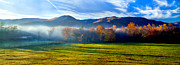 Dennis Sabo - Cades Cove Morning