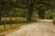 Mountain Road Posters - Cades Cove Road Poster by Andrew Soundarajan