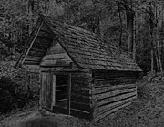 Shed Digital Art Posters - Cades Cove Shed Poster by Gary Rieks