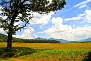 Frozen in Time Fine Art Photography - Cades Cove Tennessee