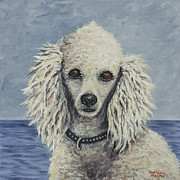White Poodle Framed Prints - Caine Framed Print by Darice Machel McGuire