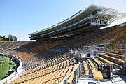 Schools Photos - Cal Golden Bears California Memorial Stadium Berkeley California 5D24681 by Wingsdomain Art and Photography