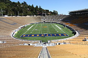 Cal Bear Prints - Cal Golden Bears California Memorial Stadium Berkeley California 5D24682 Print by Wingsdomain Art and Photography