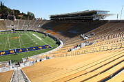 Cal Bear Prints - Cal Golden Bears California Memorial Stadium Berkeley California 5D24686 Print by Wingsdomain Art and Photography