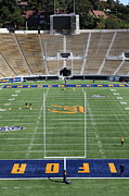 Cal Bear Prints - Cal Golden Bears California Memorial Stadium Berkeley California 5D24688 Print by Wingsdomain Art and Photography