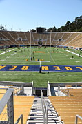 Schools Framed Prints - Cal Golden Bears California Memorial Stadium Berkeley California 5D24712 Framed Print by Wingsdomain Art and Photography
