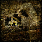 Stray Digital Art - Calico cat by Alice Van der Sluis