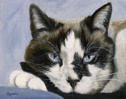 Amy Reges - Calico Cat with Attitude