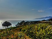 Big Sur Ca Metal Prints - California - Big Sur 003 Metal Print by Lance Vaughn