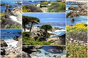 Landscape Art - California Coast Collage by Carol Groenen