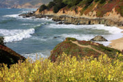 California Coast Framed Prints - California Coast Overlook Framed Print by Carol Groenen