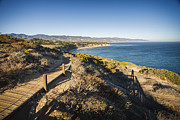 Boardwalk Posters - California coastline from Point Dume Poster by Adam Romanowicz
