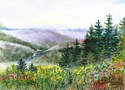 California Landscapes View Of The Redwood Creek National Park Print by Irina Sztukowski