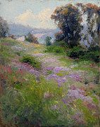 Phlox Painting Framed Prints - California Phlox Framed Print by Mark  Gingerich