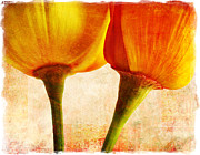 Grow Digital Art Metal Prints - California Poppies Metal Print by Elena Nosyreva
