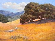 Maralyn Miller - California Summer