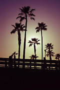 Tropical Sunset Framed Prints - California Sunset Picture with Palm Trees Framed Print by Paul Velgos