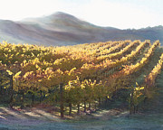 Wine Art - California Vineyard Series Vineyard in the Mist by Author and Photographer Laura Wrede