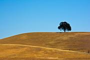 Randall Branham - Californias Baby Blue Skys