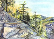 Moss Green Drawings Prints - Californias Sierras Print by Carol Wisniewski
