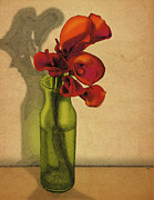 Meg Shearer - Calla Lilies in Bloom