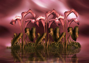 Reflections Digital Art - Calla Lily Island by Zeana Romanovna