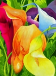 Colorful Blooms Posters - Calla Lily Rainbow Poster by Janis Grau