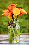 Mason Jar Prints - Callas and the Butterfly Print by Darren Fisher