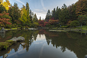 Japanese Garden Posters - Calm Autumn Garden Poster by Mike Reid