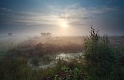 Early Morning Sun Photos - Calm Misty Sunrise Over Marsh by Olha Rohulya