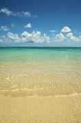 Charmian Vistaunet - Calm Ocean Shore