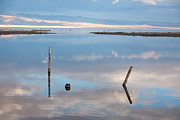 Pilings Prints - Calm Print by Peter Tellone