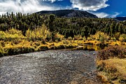 Big Thompson River Prints - Calm Waters Print by Jon Burch Photography
