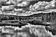 Fir Trees Photos - Calmness at the Green Bridge - Old Forge New York by David Patterson