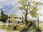 Cambria Paintings - Cambria Barn by Francie Beaman