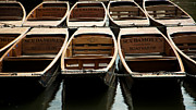 Students Photo Prints - Cambridge Punts Print by Maurizio Incurvati