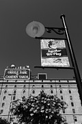 Baltimore Baseball Prints - Camden Yards Baltimore Print by James Brunker