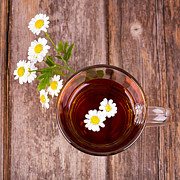 Daisy Art - Camomile tea by Jane Rix