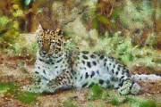 Cheetah Mixed Media Prints - Camouflage Cat Print by Trish Tritz