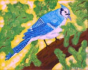 Bird Paintings - Camp Robber by Vicki Maheu