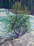 Rushing Water Paintings - Campbell River by Derrick Higgins